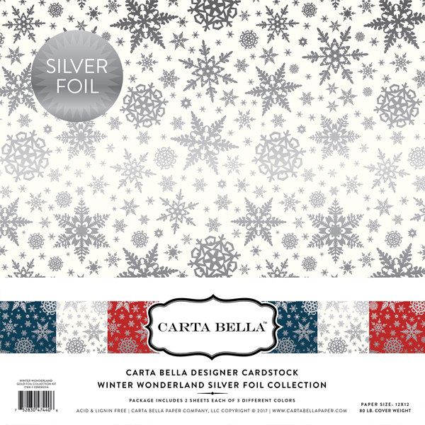 Winter Wonderland Silver Foil