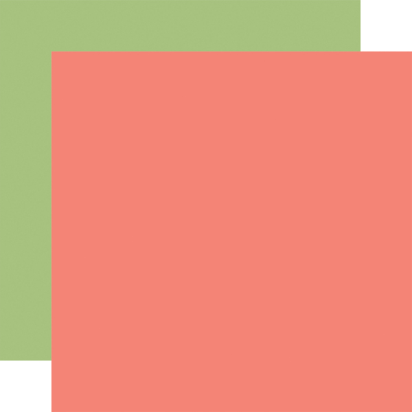 BAG202017 Pink Green Coordinating Solid