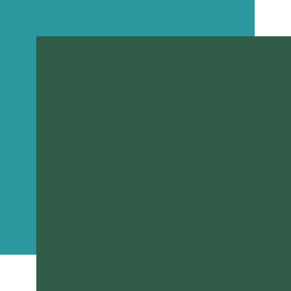 CBSC119018 Green Teal Coordinating Solid